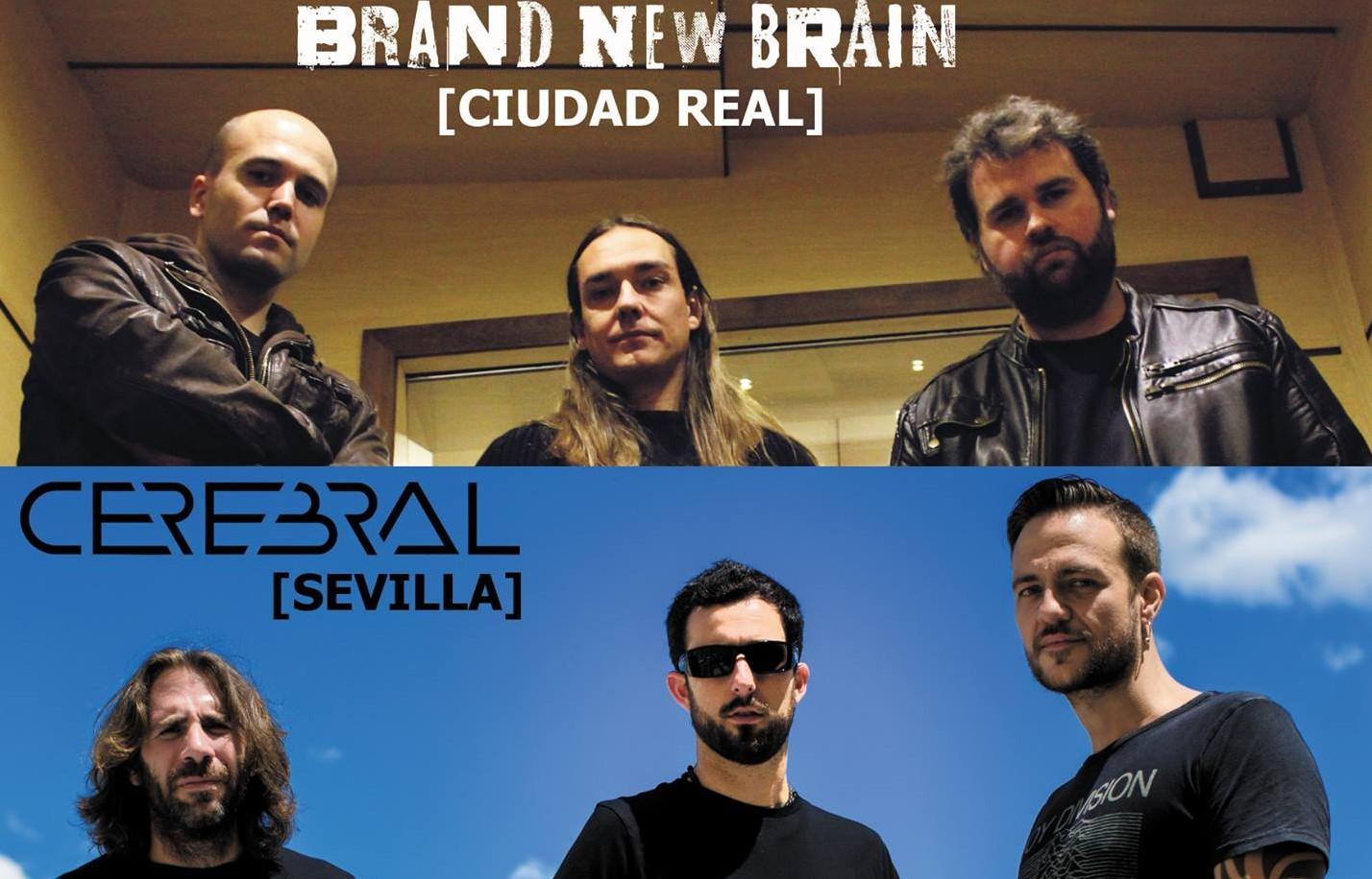 Gran fin de semana de conciertos por casa, en Tomelloso (CR) y Ciudad Real